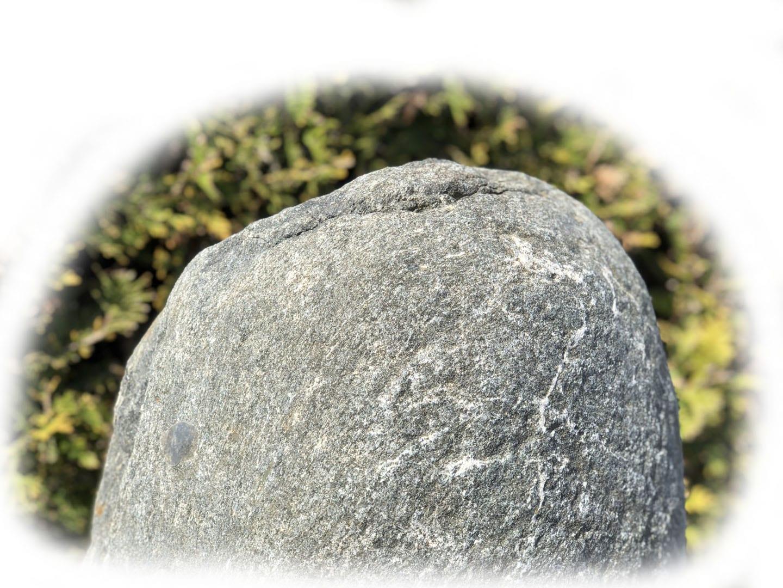 Grafsteen Olive Green graniet 50