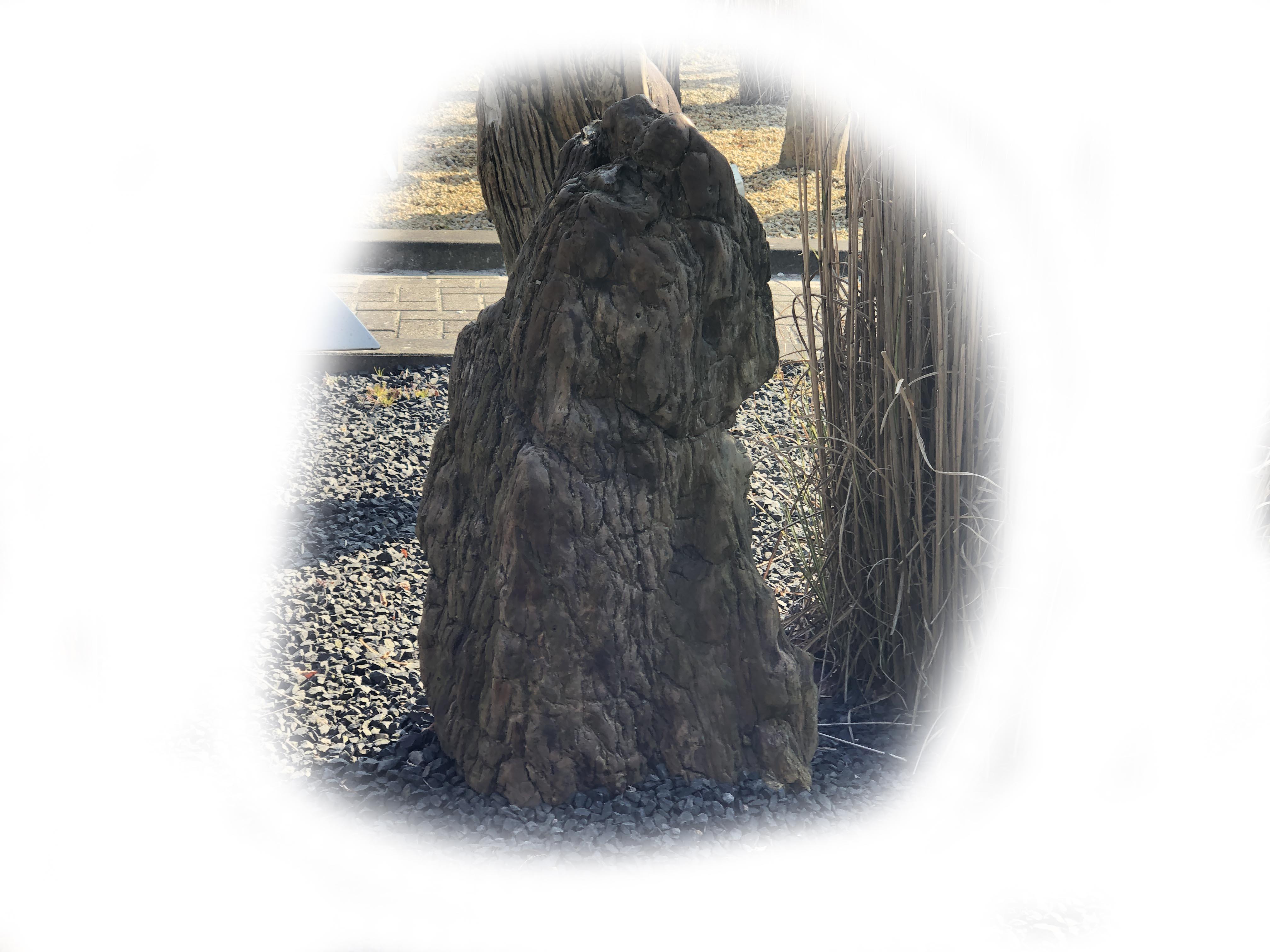 Versteend hout K-136