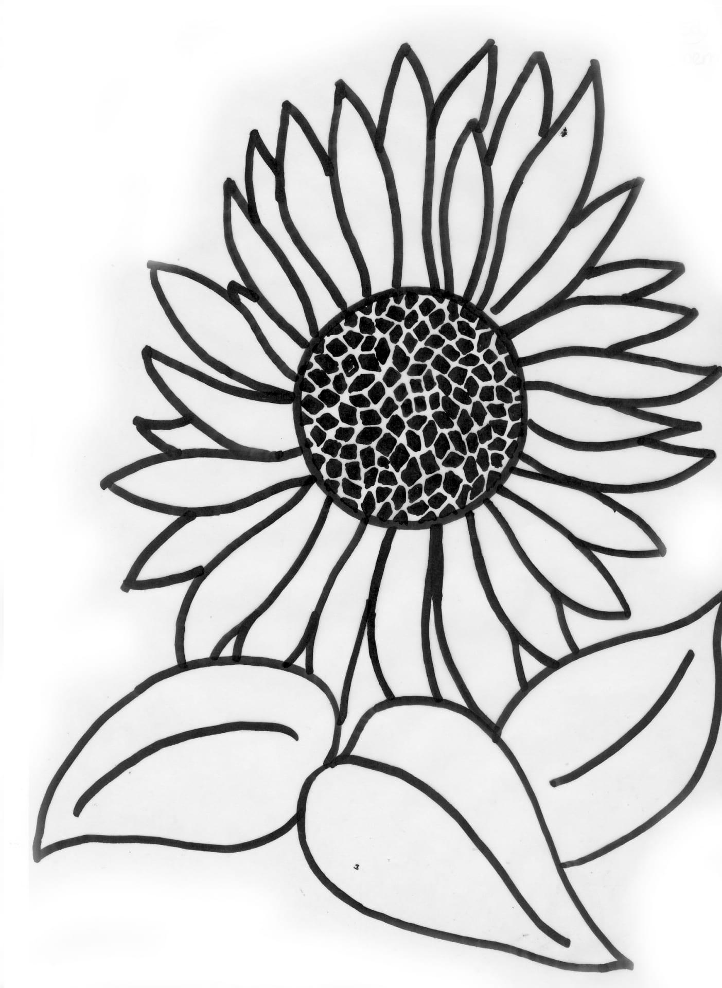 Een afbeelding van een zonnebloem die kan worden gezandstraald op een grafmonument