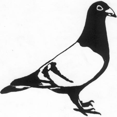 Een afbeelding van een duif die kan worden gezandstraald op een grafmonument